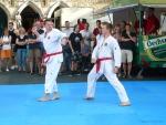 25-Jahre-Taekwondo-Gala (79).jpg