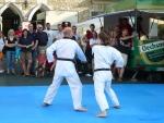 25-Jahre-Taekwondo-Gala (81).jpg