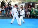 25-Jahre-Taekwondo-Gala (82).jpg