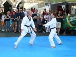 25-Jahre-Taekwondo-Gala (83).jpg