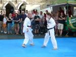 25-Jahre-Taekwondo-Gala (84).jpg