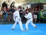 25-Jahre-Taekwondo-Gala (86).jpg