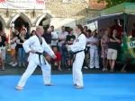 25-Jahre-Taekwondo-Gala (87).jpg