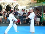 25-Jahre-Taekwondo-Gala (89).jpg