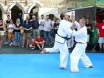 25-Jahre-Taekwondo-Gala (113).jpg