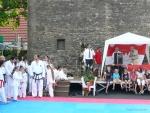 25-Jahre-Taekwondo-Gala (9).jpg