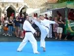 25-Jahre-Taekwondo-Gala (90).jpg