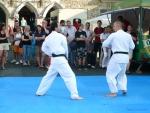 25-Jahre-Taekwondo-Gala (91).jpg