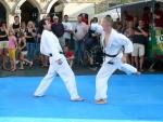 25-Jahre-Taekwondo-Gala (93).jpg