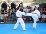 25-Jahre-Taekwondo-Gala (94).jpg