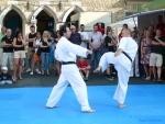 25-Jahre-Taekwondo-Gala (95).jpg