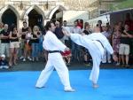 25-Jahre-Taekwondo-Gala (96).jpg