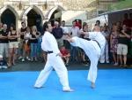 25-Jahre-Taekwondo-Gala (98).jpg