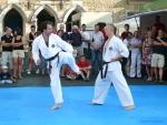 25-Jahre-Taekwondo-Gala (99).jpg