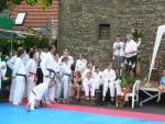 25-Jahre-Taekwondo-Gala.jpg