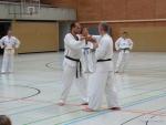 25-Jahre-Taekwondo-Lehrgang (104).jpg
