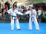 25-Jahre-Taekwondo-Gala (115).jpg