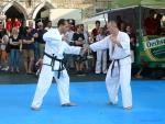 25-Jahre-Taekwondo-Gala (116).jpg
