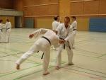 25-Jahre-Taekwondo-Lehrgang (123).jpg