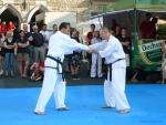 25-Jahre-Taekwondo-Gala (117).jpg