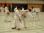 25-Jahre-Taekwondo-Lehrgang (124).jpg