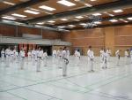 25-Jahre-Taekwondo-Lehrgang (126).jpg