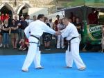 25-Jahre-Taekwondo-Gala (118).jpg