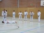 25-Jahre-Taekwondo-Lehrgang (141).jpg