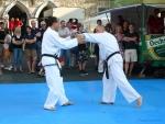 25-Jahre-Taekwondo-Gala (119).jpg