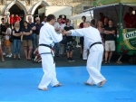 25-Jahre-Taekwondo-Gala (120).jpg