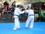 25-Jahre-Taekwondo-Gala (121).jpg