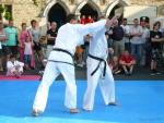 25-Jahre-Taekwondo-Gala (122).jpg