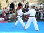 25-Jahre-Taekwondo-Gala (123).jpg