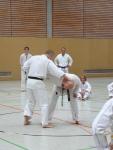 25-Jahre-Taekwondo-Lehrgang (42).jpg