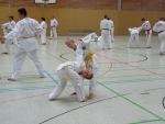 25-Jahre-Taekwondo-Lehrgang (46).jpg