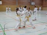 25-Jahre-Taekwondo-Lehrgang (47).jpg
