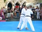 25-Jahre-Taekwondo-Gala (124).jpg