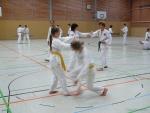 25-Jahre-Taekwondo-Lehrgang (49).jpg