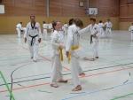 25-Jahre-Taekwondo-Lehrgang (51).jpg