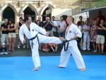 25-Jahre-Taekwondo-Gala (100).jpg
