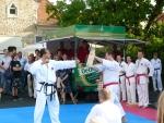 25-Jahre-Taekwondo-Gala (125).jpg