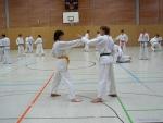 25-Jahre-Taekwondo-Lehrgang (57).jpg