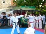 25-Jahre-Taekwondo-Gala (126).jpg