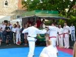25-Jahre-Taekwondo-Gala (127).jpg