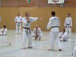 25-Jahre-Taekwondo-Lehrgang (81).jpg