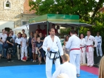 25-Jahre-Taekwondo-Gala (129).jpg
