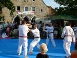 25-Jahre-Taekwondo-Gala (130).jpg