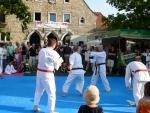 25-Jahre-Taekwondo-Gala (131).jpg