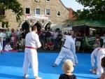 25-Jahre-Taekwondo-Gala (132).jpg