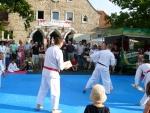 25-Jahre-Taekwondo-Gala (133).jpg